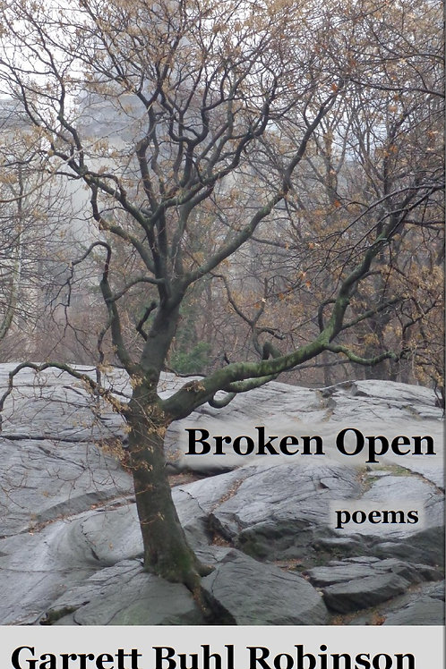 Broken Open - signed copy