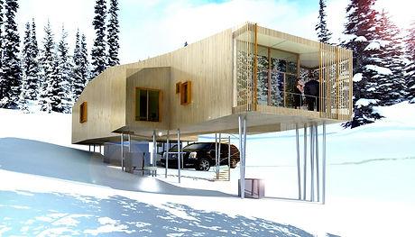 PLB chenille house
