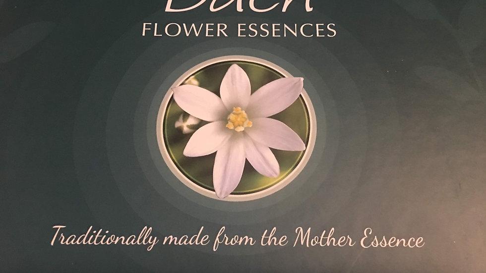 10ml Bach Flower Essence