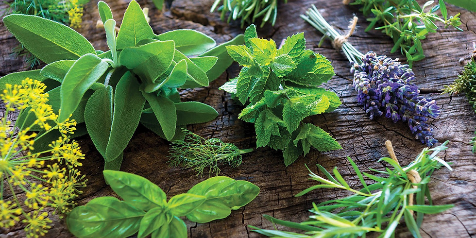 Herbal Health Class