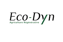Eco-Dyn.png