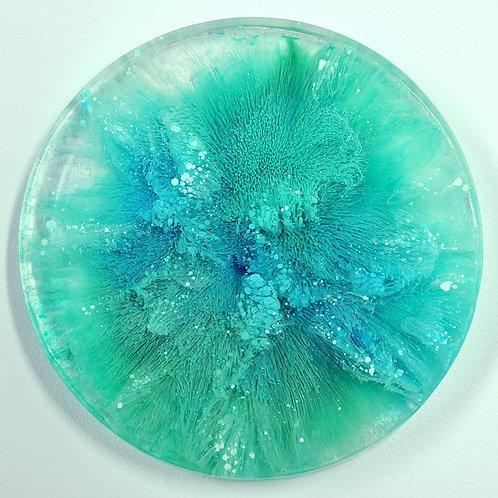 Petri Disc - Teal (#6104)