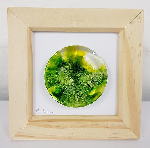 Mini Petri - Green FRAMED (#7015)