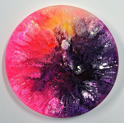 Petri Disc - Multi (#6107)