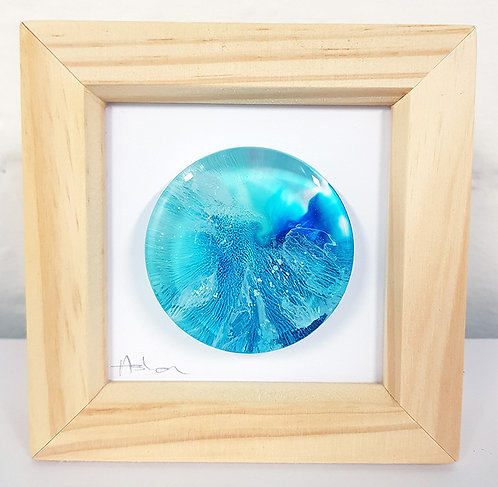Mini Petri - Blue FRAMED (#7014)