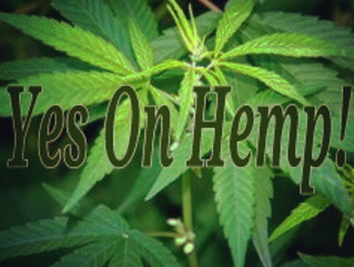 How Is Hemp Oil A Legal Source of CBD?