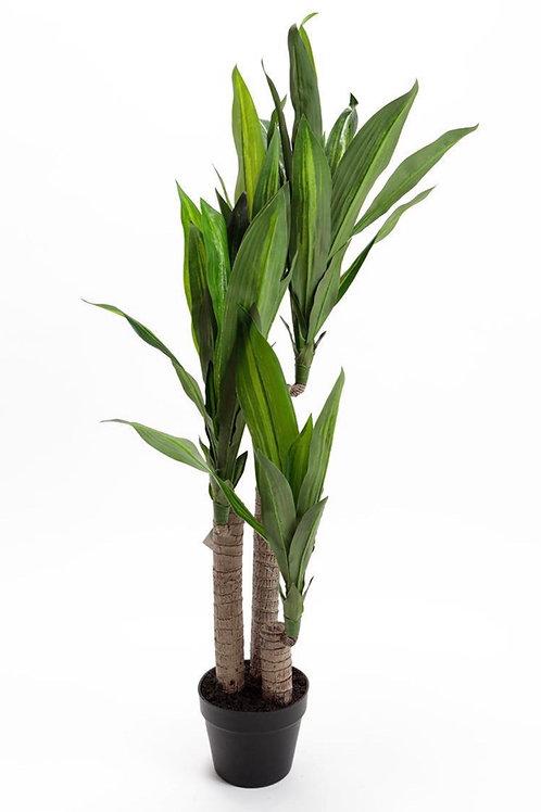 Artificial Dracaena Dragon Tree