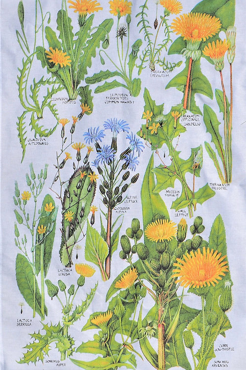 Botanical Tea Towel - Dandelion