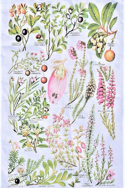 Botanical Tea Towel - Berries