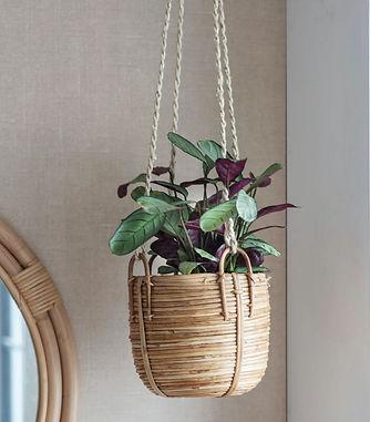 Rattan hanging plant pot.JPG