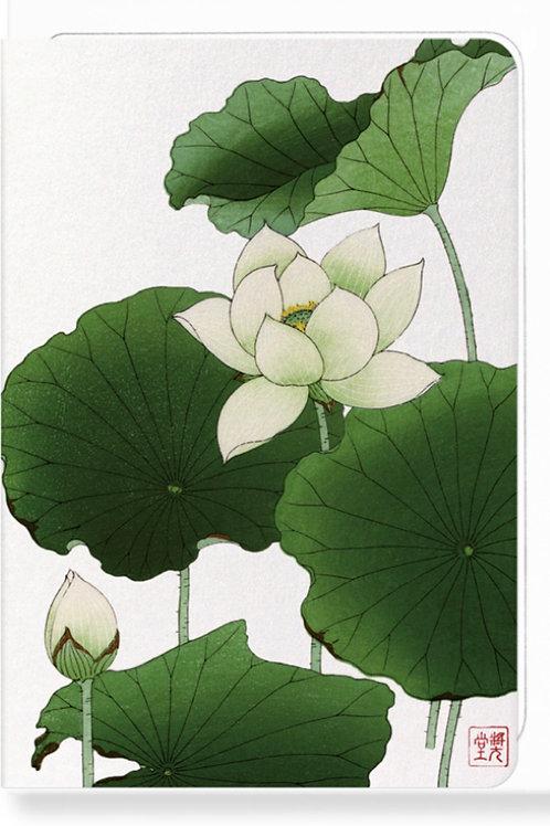 Lotus Flower - Greetings Card