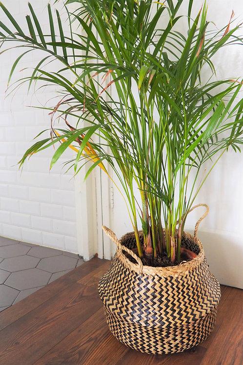 Zigzag Seagrass Basket