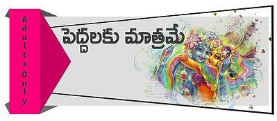 Sarasa shrungaram Banner.jpg