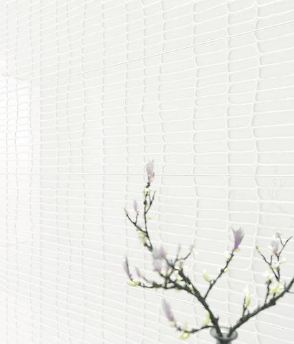 ceramhome, azulejos blancos, ceramicas fanal, azulejos alcor, azulejos decorado, azuelejos rectificado.