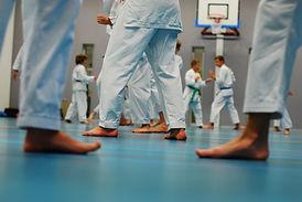 inschrijven volwassenen proefles Karate omgeving Oisterwijk, Hilvarenbeek, Tilburg