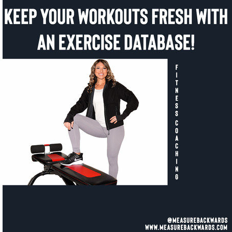 An Exercise Database to Keep Your Workouts Fresh