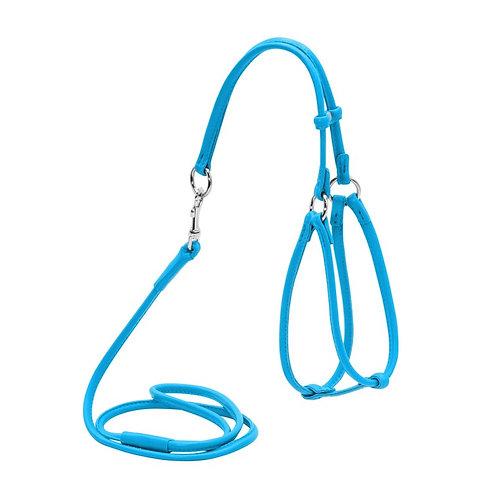 Шлея круглая WAUDOG GLAMOUR №1 с поводком (голубой)