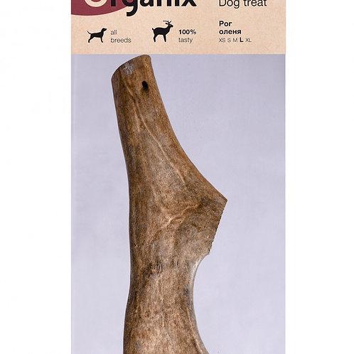 Премиум лакомство Рог оленя (размер L)