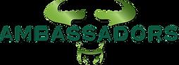 Ambassador_USF_logo.png