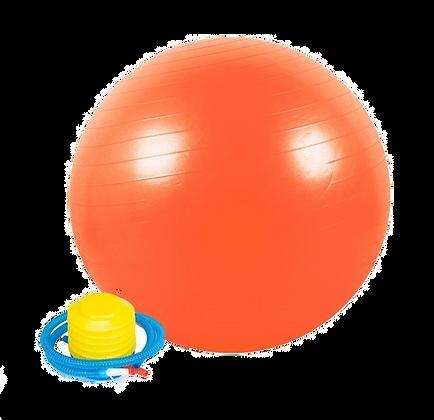 כדור פיזיו במגוון גדלים כולל משאבה