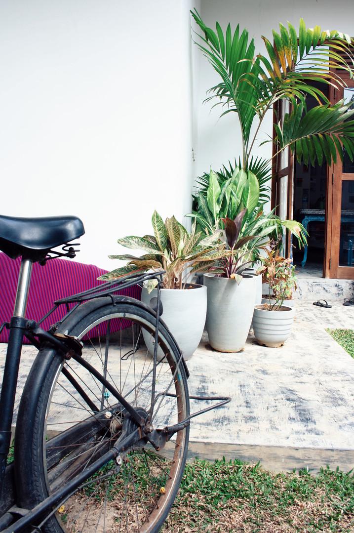 bicycles garden freedom villa
