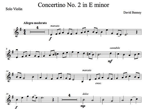 Violin Concertino No 2 in E minor (violin and piano), David Banney