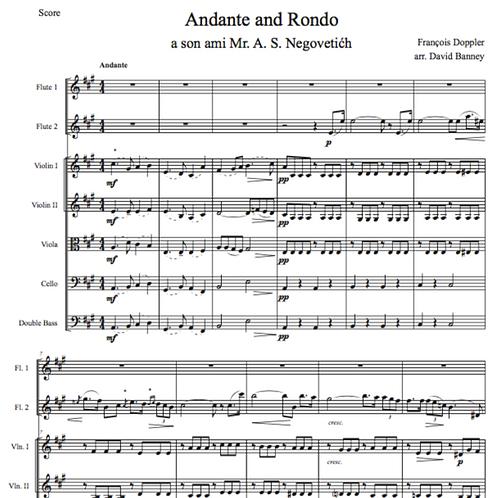 Andante and Rondo, Op. 25, Franz Doppler, arr. David Banney