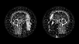 Artificial Intelligence Applications – Did you know?