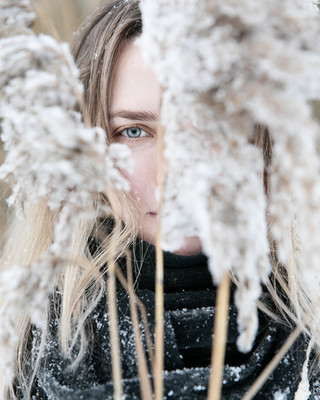 Sasha (Winter)
