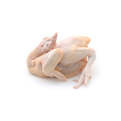 AL-AQSA Zabihah Halal Meat and Poultry