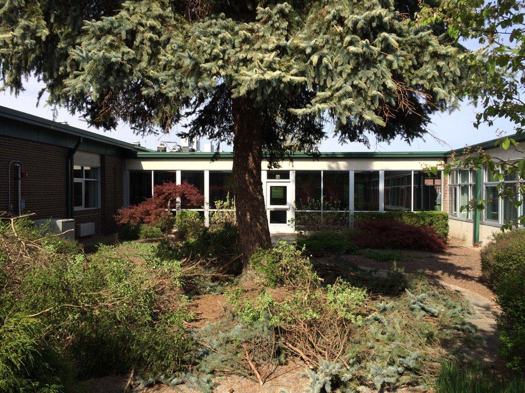 NM Courtyard Pre