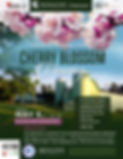 Hanami Spring Picnic Flyer