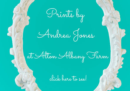 Link to Andrea Jones Photography print shop
