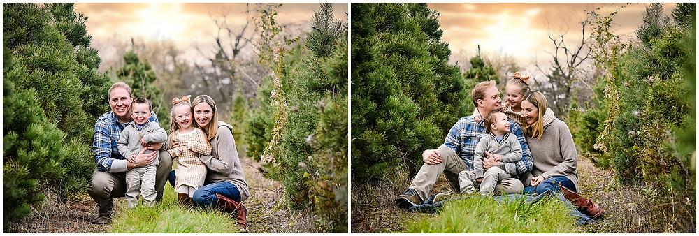 Naperville Tree Farm Photo Session, Tree Farm Mini Session, Abbey Farms Aurora