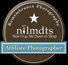 nilmdts_logo.png
