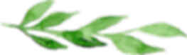 25006 (11).png