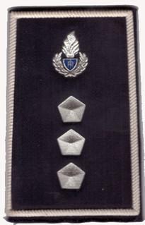 Polizia Penitenziaria - Rangabzeichen.jp
