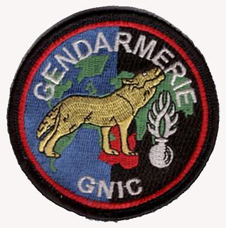 Gendarmerie GNIC.jpg