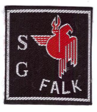 Swat Team Falk alt.jpg