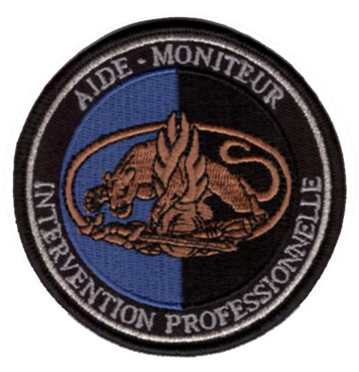 Gendarmerie F Intervention.jpg