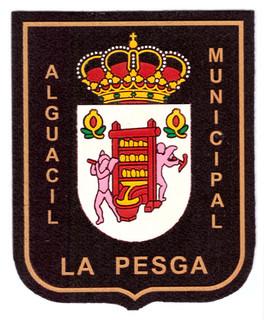 Policia Municipal La Pesga.jpg