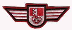 Brustabzeichen Kapo Obwalden.jpg