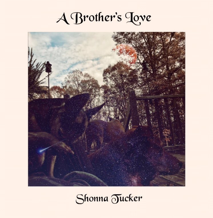A Brother's Love by Shonna Tucker