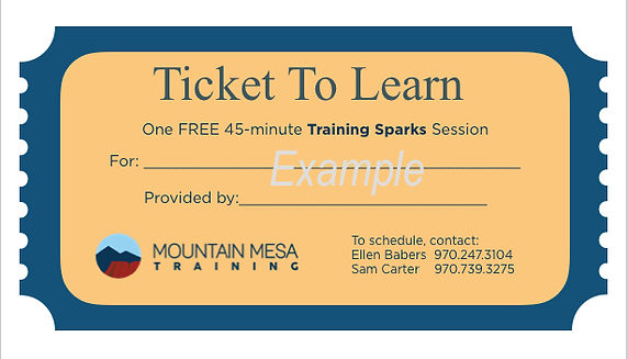 Ticket To Learn Example.jpg