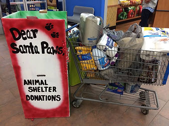 Santa Paws box full.jpg