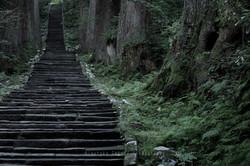神霊の宿る森
