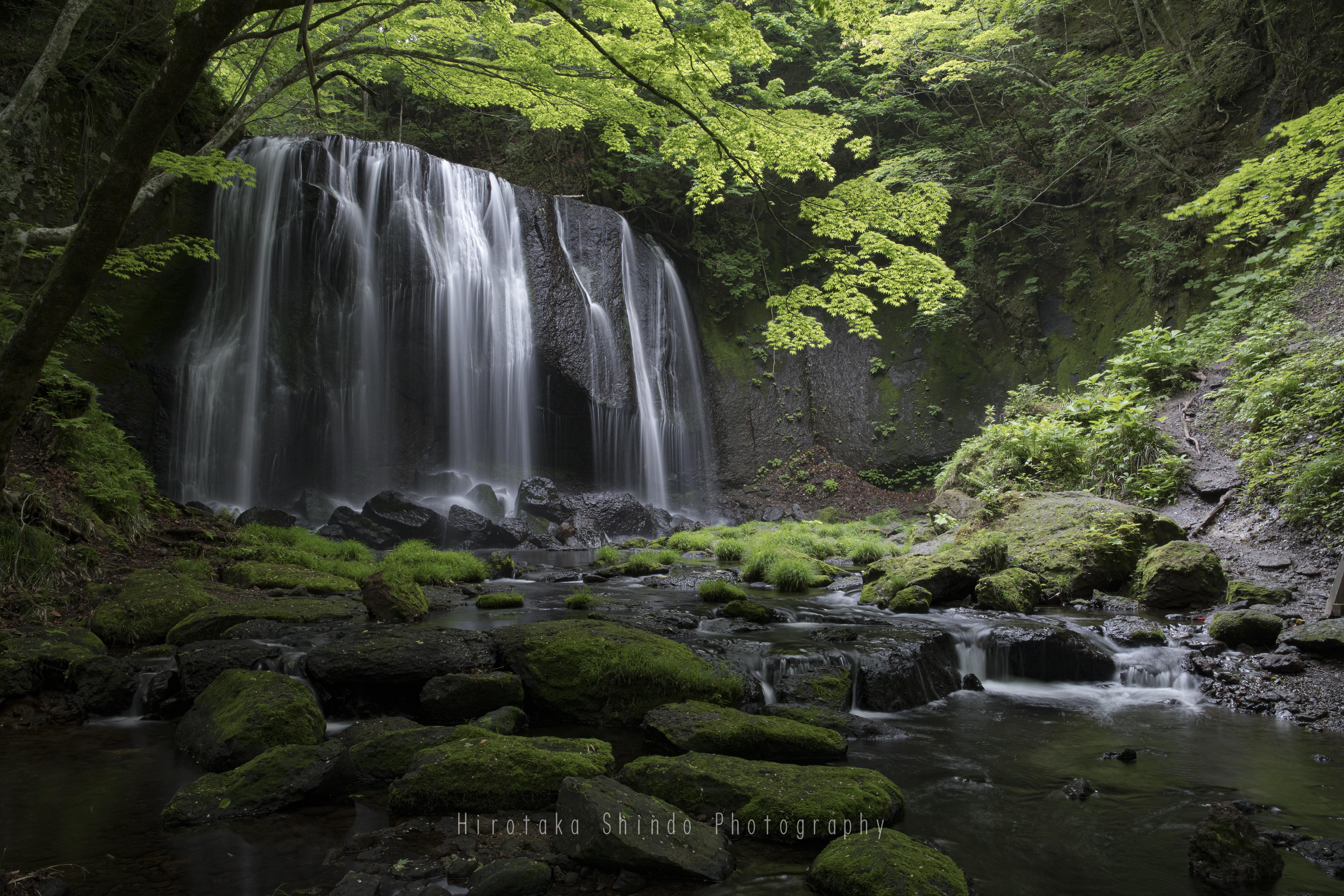 森の妖精との待ち合わせ場所