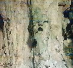 cova dels coloms 2.jpeg