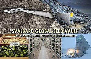 Banco mundial de semillas. Foto. infoemergencias.com