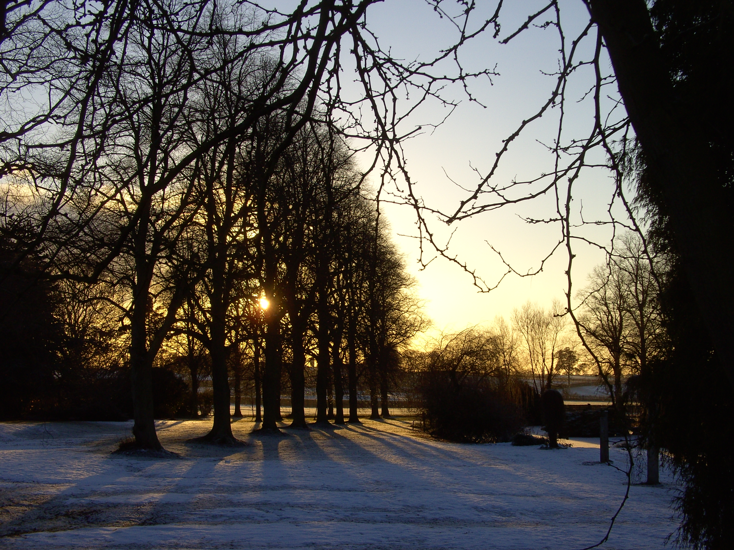Winter Scene,, Brooksby Melton College